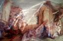 Obrázek Směs hovězích a vepřových kostí 5kg