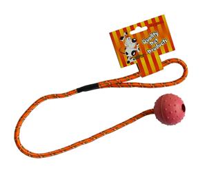 Picture of TG míček na šňůře 5cm/50cm